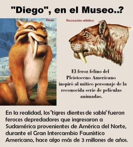 DIEGO EN EL MUSEO-volante